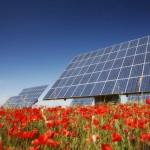 Il governo pronto a un confronto sugli incentivi all'energia verde, ma con dei limiti