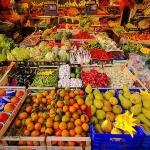 Il ministro Catania ed i suoi piani per l'agricoltura