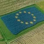 Progetti di Politica agricola comune